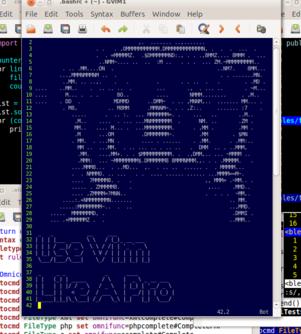 Use Vim Like A Pro