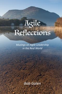 Agile Reflections for Agile Leaders