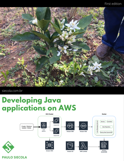 Developing Java applications on AWS