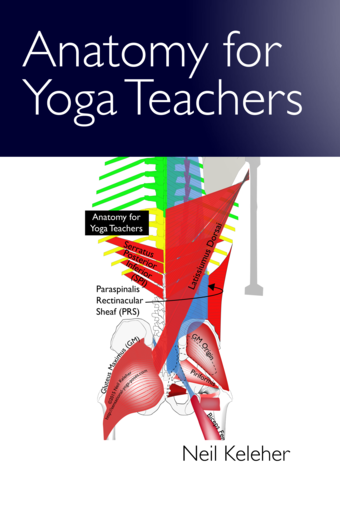 Anatomy for Yoga Teachers