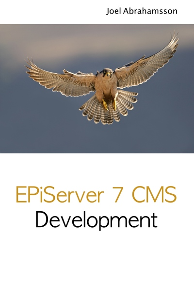 EPiServer 7 CMS Development