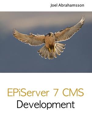 EPiServer 7 CMS Development