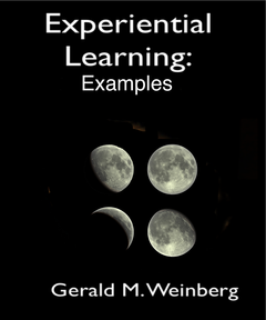 Experiential Learning 4: Sample Exercises