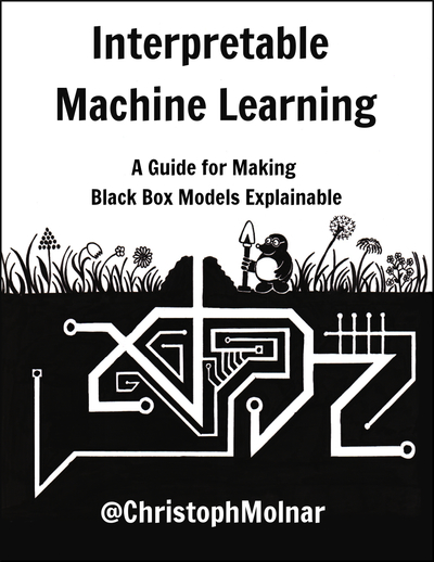 Interpretable Machine Learning: A Guide for Making Black Box Models Explainable by Christoph Molnar