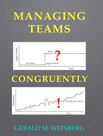 Managing Teams Congruently