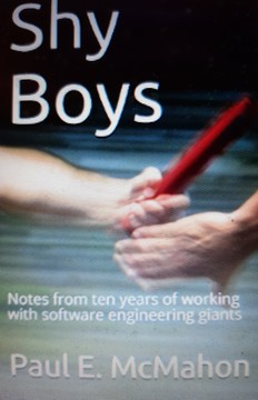 Shy Boys: Notes from ten years of working with software engineering giants
