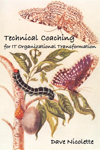 Technical Coaching for IT Organizational Transformation