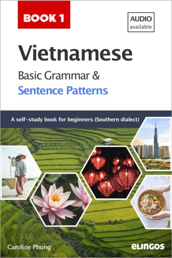Vietnamese Basic Grammar and Sentence Patterns - Book 1 (Audio available)