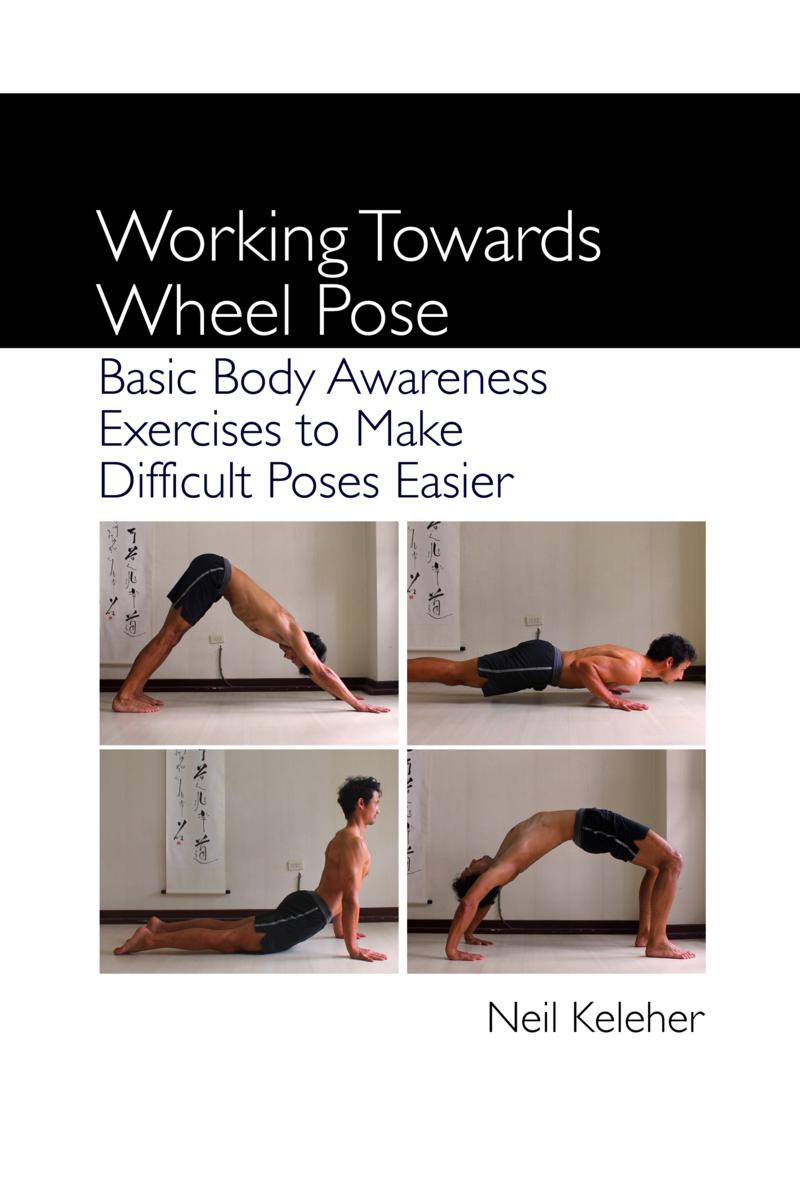 ab wheel exercises pdf